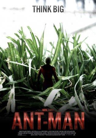 Будет ли продолжение фильма Человек-муравей?