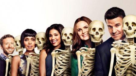 Когда выйдет 5 серия 11 сезона сериала Кости?